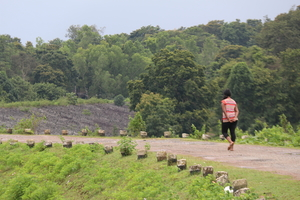 Dandeli - A walk with the nature