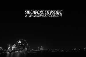 A day in Singapore the lion city