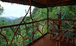 Fairytale Tree House Stays in India