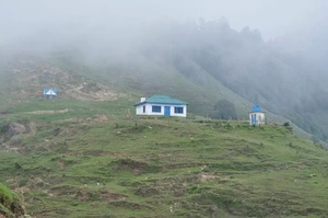 Wilderness in Palampur