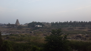 Looking for grass in Hampi