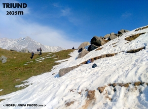 Mountains Calling – Triund