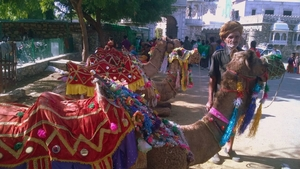 Of Flowing Love : Udaipur, The Venice of East