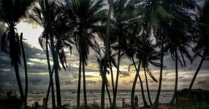 Colombo through my eyes❤