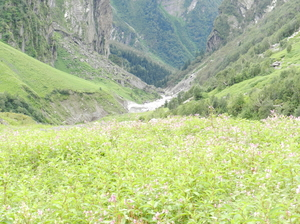Witness Heaven in Nature's Own Valley: The Valley of Flowers Trek, Uttarakhand