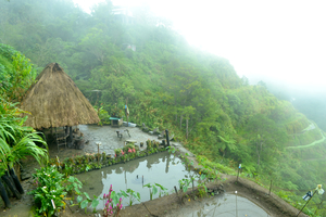 Banaue-Sagada | Exploring Rice Terraces and Caves