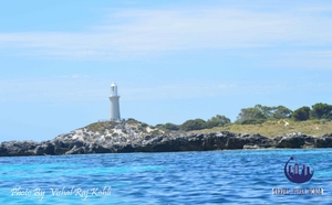 Top 5 Things To Do At Rottnest Island