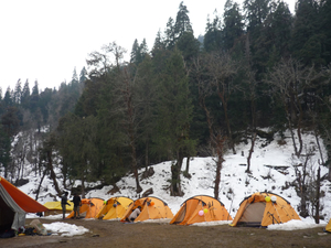 Trek to Kedarkantha, the Himalayas