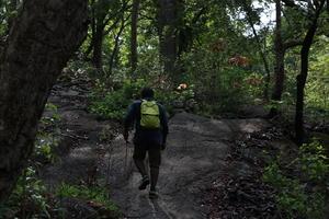 An adventuruous weekend trek in marotichal !