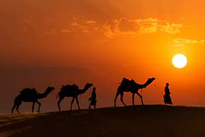 Discovering the real India. Road trip to Rajasthan