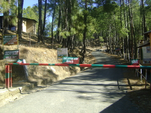 Valley of the Gods: Binsar