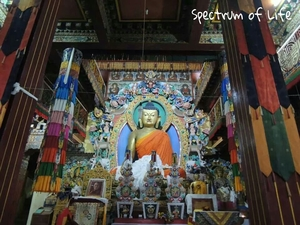 Tawang: An Unexplored Paradise