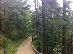 Weekend Getaway to Mussoorie-Landour