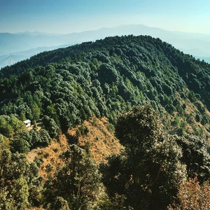 Kali Ka Tibba Chail, Himachal Pradesh