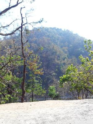 "Rishikesh - "" Where Beauty Meets Adventure """