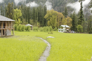 Kasol: Backpackers paradise