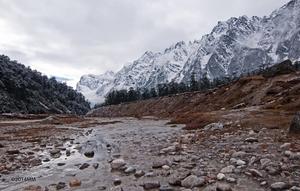 Cloud9- Sikkim