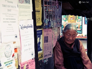 Think Tibet. Mcleodganj Musings
