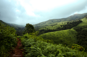 Kudremukh - The trekker paradise