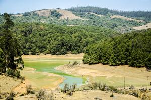 Parsons valley trek, Ooty, Nilgiris