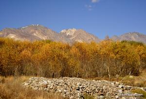 Raiding Da Himalayan Valley
