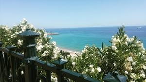 Oh My Tarragona !