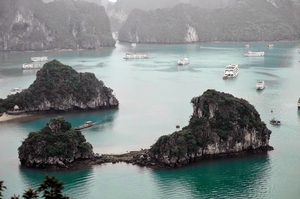 Cruise along Ha Long Bay