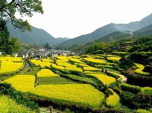 Huangshan & Beyond: A Photography Tour