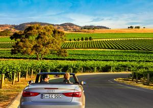 The Barossa Valley, Australia's Renowned Wine Region
