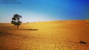 Jaisalmer - Sun and Sand Dunes