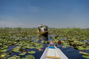 Jammu & Kashmir. ( Paradise of India )