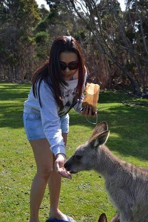 Melbourne ~ Great Ocean Road & Philip Island