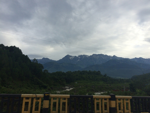 A Monsoon Weekend in Palampur