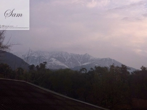 Palampur, Himachal Pradesh - Sam's Travel and Eating guide.