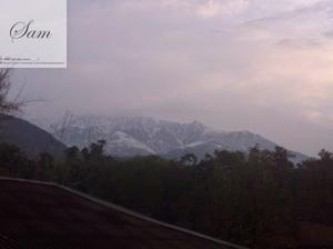 Palampur, Himachal Pradesh - Sam's Travel and Eating guide.
