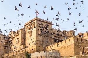Taken By The Hand - Jaisalmer