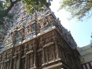 Golden Madurai