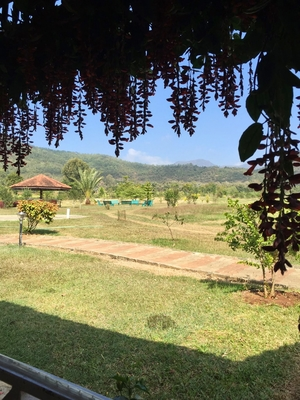 Exploring Chikmagalur- 'land of coffee plantation'