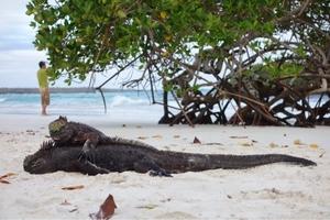 Santa Cruz, Galapagos Islands