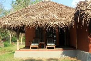 Kabini, India – Surrender yourself to Nature