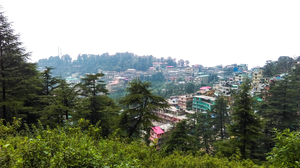 A walk into the Clouds - Dharamshala , Mcleodganj and Triund !