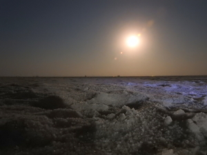 To the moon and back - Rann of Kutch travel story