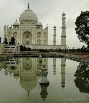 WANDERLUST: ANT'S-EYE VIEW OF THE TAJ MAHAL