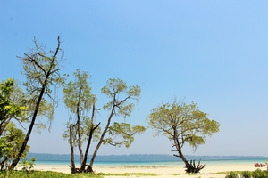 Andamans - a must see destination
