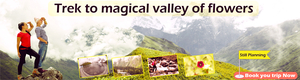 Trek with Us to the Magical Valley of flowers Uttrakhand ,India