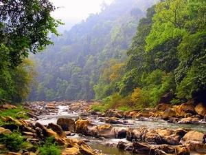 River Trekking at Neora Valley National Park