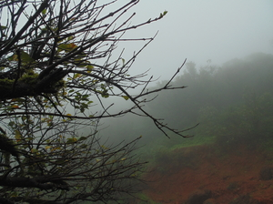 Mahabaleshwar In Monsoon :)