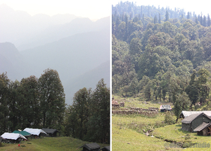 TRAVEL :: Magpie Jungle Camp, CHOPTA