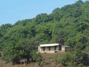 Nature tripping in Bhimashankar Wildlife Sanctuary, Western Ghats, Maharashtra