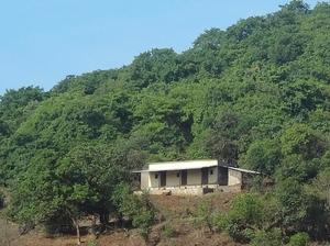 Nature tripping in Bhimashankar Wildlife Sanctuary, Western Ghats, Maharashtra